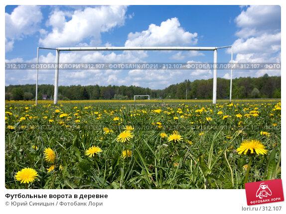 Купить «Футбольные ворота в деревне», фото № 312107, снято 18 мая 2008 г. (c) Юрий Синицын / Фотобанк Лори