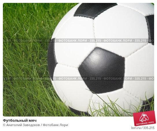 Футбольный мяч, фото № 335215, снято 21 июня 2008 г. (c) Анатолий Заводсков / Фотобанк Лори
