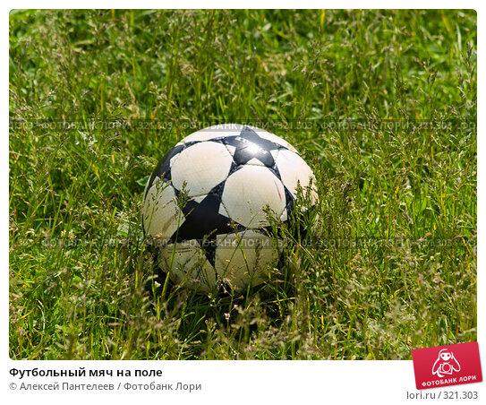Футбольный мяч на поле, фото № 321303, снято 12 июня 2008 г. (c) Алексей Пантелеев / Фотобанк Лори
