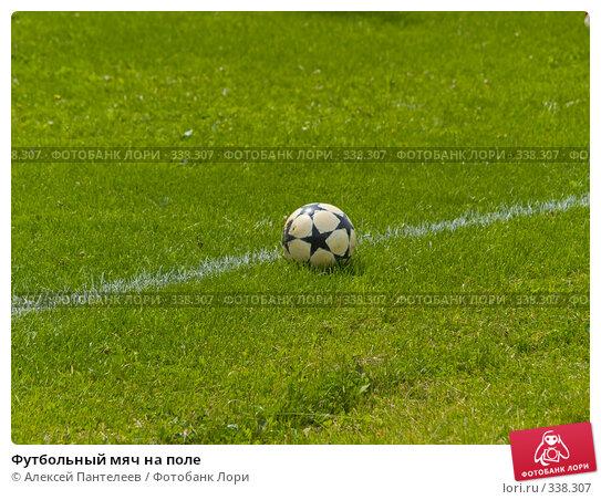 Футбольный мяч на поле, фото № 338307, снято 21 июня 2008 г. (c) Алексей Пантелеев / Фотобанк Лори