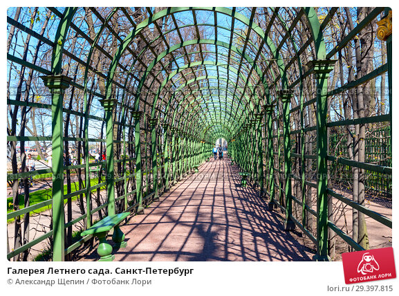 Купить «Галерея Летнего сада. Санкт-Петербург», фото № 29397815, снято 9 мая 2018 г. (c) Александр Щепин / Фотобанк Лори