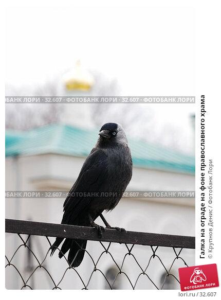 Галка на ограде на фоне православного храма, фото № 32607, снято 14 марта 2007 г. (c) Крупнов Денис / Фотобанк Лори