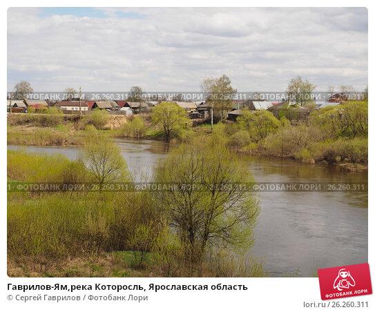 город гаврилов ям ярославской области Высокий воротник Застежка-молния