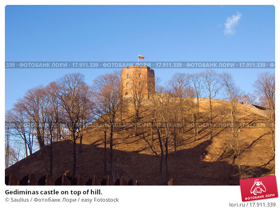the gediminas castle essay