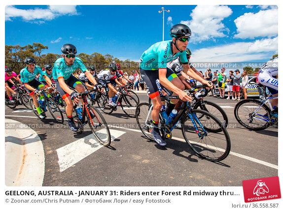 GEELONG, AUSTRALIA - JANUARY 31: Riders enter Forest Rd midway thru... Стоковое фото, фотограф Zoonar.com/Chris Putnam / easy Fotostock / Фотобанк Лори