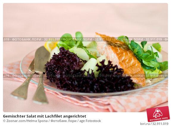Gemischter Salat mit Lachfilet angerichtet. Стоковое фото, фотограф Zoonar.com/Helma Spona / age Fotostock / Фотобанк Лори