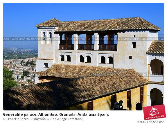 Generalife palace, Alhambra, Granada, Andalusia,Spain. Стоковое фото, фотограф Frederic Soreau / age Fotostock / Фотобанк Лори