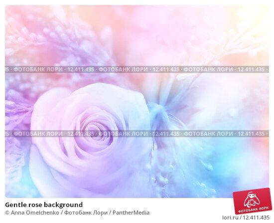 Gentle rose background. Стоковое фото, фотограф Anna Omelchenko / PantherMedia / Фотобанк Лори