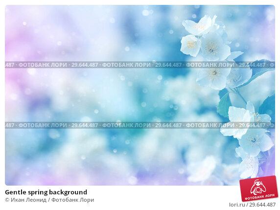 Купить «Gentle spring background», фото № 29644487, снято 18 июня 2018 г. (c) Икан Леонид / Фотобанк Лори