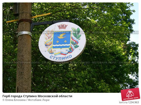 Герб города Ступино Московской области, эксклюзивное фото № 234963, снято 12 июня 2007 г. (c) Елена Блохина / Фотобанк Лори