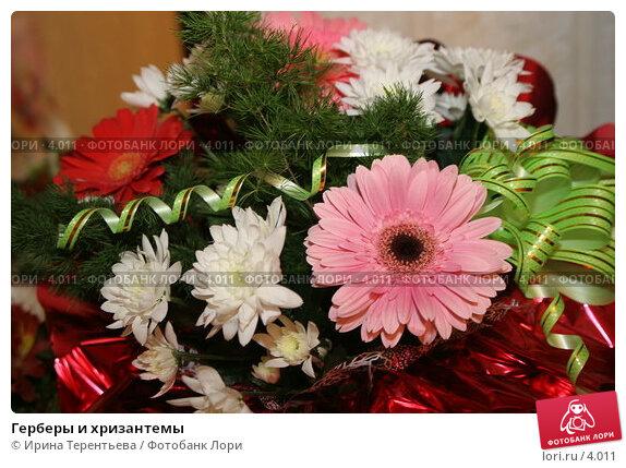 Герберы и хризантемы, эксклюзивное фото № 4011, снято 18 февраля 2006 г. (c) Ирина Терентьева / Фотобанк Лори
