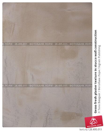 Купить «Gesso fresh plaster texture in stucco wall construction», фото № 28495011, снято 10 февраля 2013 г. (c) Ingram Publishing / Фотобанк Лори