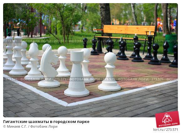 Купить «Гигантские шахматы в городском парке», фото № 273571, снято 1 мая 2008 г. (c) Минаев С.Г. / Фотобанк Лори