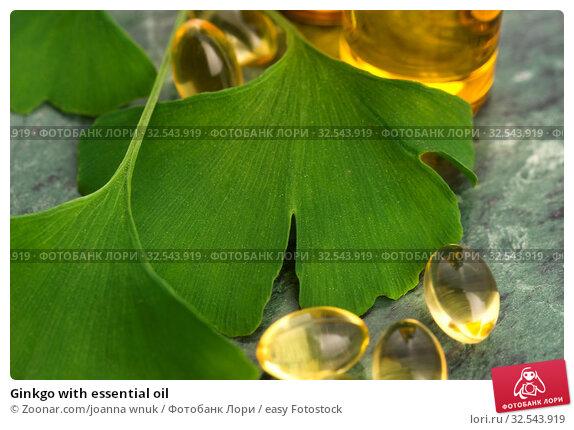 Купить «Ginkgo with essential oil», фото № 32543919, снято 10 декабря 2019 г. (c) easy Fotostock / Фотобанк Лори