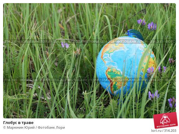 Глобус в траве, фото № 314203, снято 28 мая 2008 г. (c) Марюнин Юрий / Фотобанк Лори