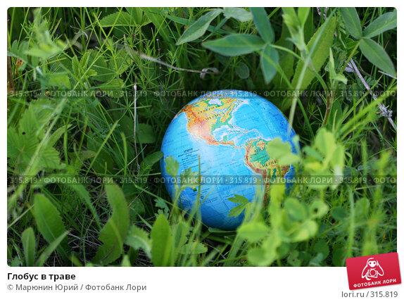 Купить «Глобус в траве», фото № 315819, снято 28 мая 2008 г. (c) Марюнин Юрий / Фотобанк Лори