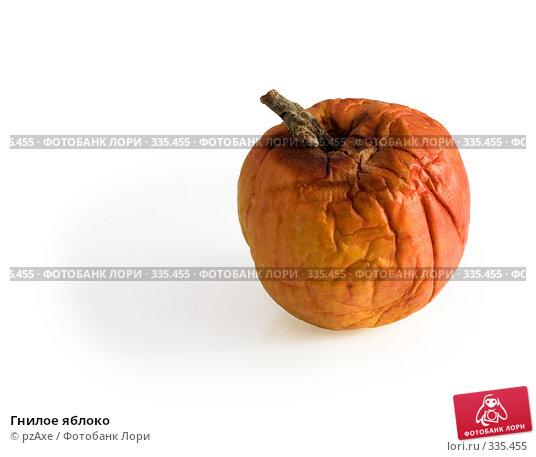 Гнилое яблоко, фото № 335455, снято 23 июня 2008 г. (c) pzAxe / Фотобанк Лори