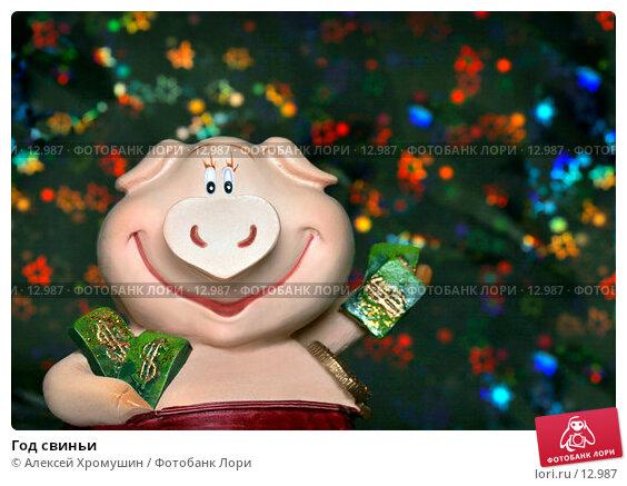 Год свиньи, фото № 12987, снято 14 ноября 2006 г. (c) Алексей Хромушин / Фотобанк Лори