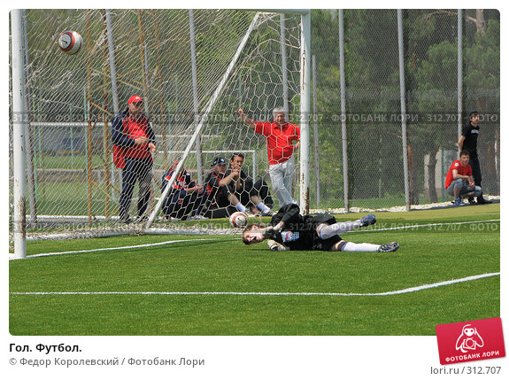 Гол. Футбол., фото № 312707, снято 3 июня 2008 г. (c) Федор Королевский / Фотобанк Лори