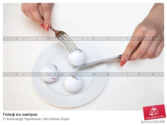 Купить «Гольф на завтрак», фото № 213979, снято 3 марта 2008 г. (c) Александр Черемнов / Фотобанк Лори