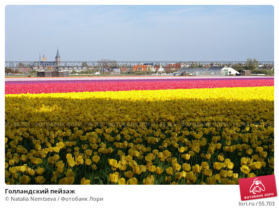 Голландский пейзаж, эксклюзивное фото № 55703, снято 19 апреля 2007 г. (c) Natalia Nemtseva / Фотобанк Лори