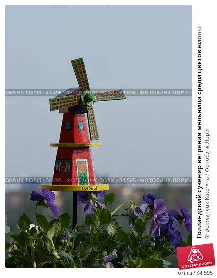 Купить «Голландский сувенир ветряная мельница среди цветов виолы», фото № 34595, снято 21 апреля 2007 г. (c) Demyanyuk Kateryna / Фотобанк Лори
