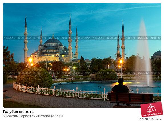 Купить «Голубая мечеть», фото № 155547, снято 24 мая 2006 г. (c) Максим Горпенюк / Фотобанк Лори