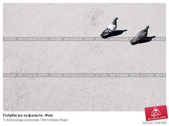 Голуби на асфальте. Фон, эксклюзивное фото № 314559, снято 7 июня 2008 г. (c) Александр Алексеев / Фотобанк Лори