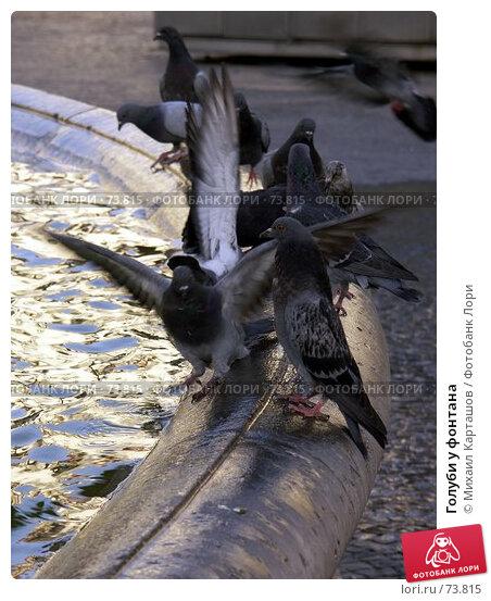 Голуби у фонтана, эксклюзивное фото № 73815, снято 28 июля 2007 г. (c) Михаил Карташов / Фотобанк Лори