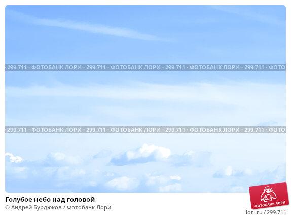 Голубое небо над головой, фото № 299711, снято 21 октября 2007 г. (c) Андрей Бурдюков / Фотобанк Лори