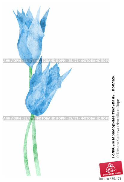 Голубые мраморные тюльпаны. Коллаж., иллюстрация № 35171 (c) Tamara Kulikova / Фотобанк Лори