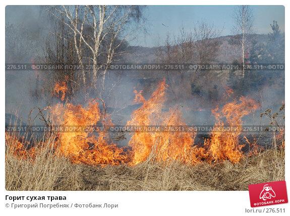 Горит сухая трава, фото № 276511, снято 7 мая 2008 г. (c) Григорий Погребняк / Фотобанк Лори