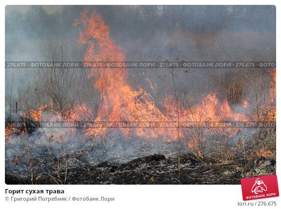 Горит сухая трава, фото № 276675, снято 7 мая 2008 г. (c) Григорий Погребняк / Фотобанк Лори