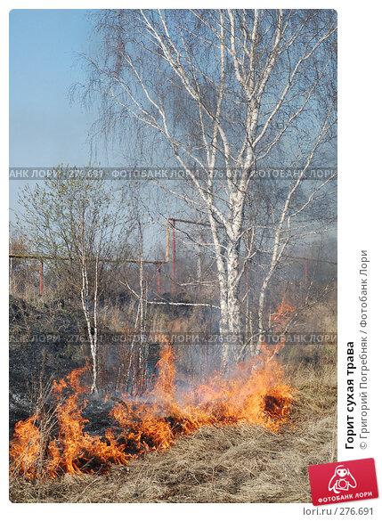 Горит сухая трава, фото № 276691, снято 7 мая 2008 г. (c) Григорий Погребняк / Фотобанк Лори