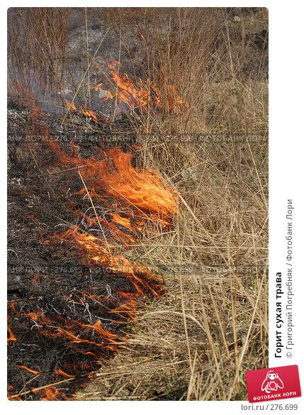 Горит сухая трава, фото № 276699, снято 7 мая 2008 г. (c) Григорий Погребняк / Фотобанк Лори