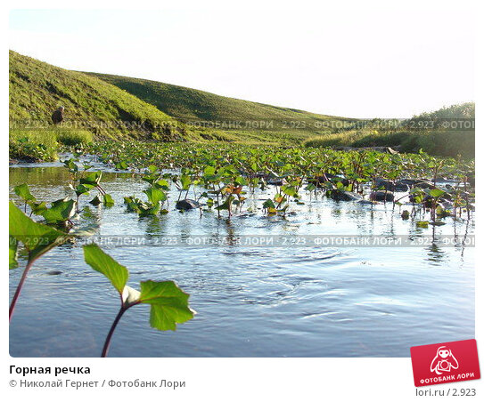 Горная речка, фото № 2923, снято 14 августа 2005 г. (c) Николай Гернет / Фотобанк Лори