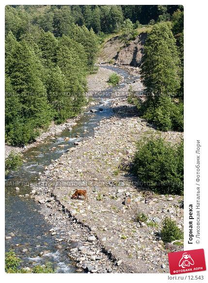Горная река, фото № 12543, снято 29 августа 2006 г. (c) Лисовская Наталья / Фотобанк Лори