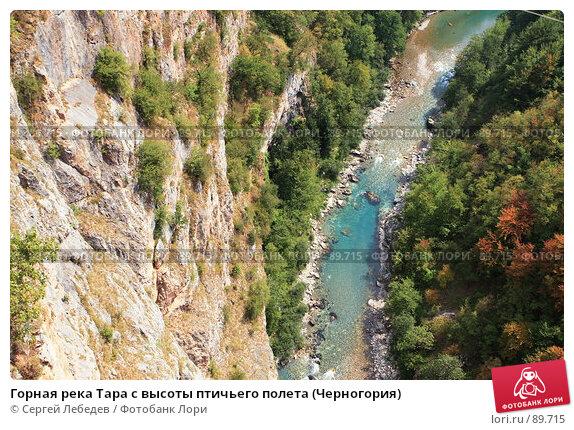 Горная река Тара с высоты птичьего полета (Черногория), фото № 89715, снято 29 августа 2007 г. (c) Сергей Лебедев / Фотобанк Лори
