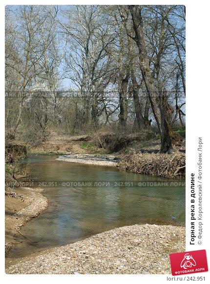 Горная река в долине, фото № 242951, снято 4 апреля 2008 г. (c) Федор Королевский / Фотобанк Лори