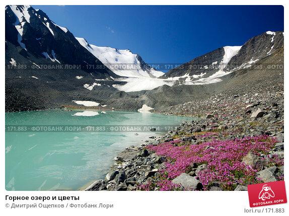 Горное озеро и цветы, фото № 171883, снято 7 августа 2007 г. (c) Дмитрий Ощепков / Фотобанк Лори