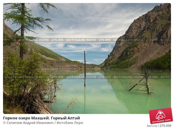 Горное озеро Маашей. Горный Алтай, фото № 279099, снято 14 июля 2006 г. (c) Селигеев Андрей Иванович / Фотобанк Лори