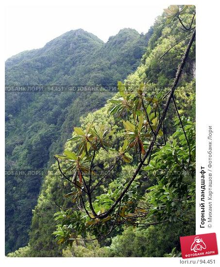 Горный ландшафт, эксклюзивное фото № 94451, снято 2 августа 2007 г. (c) Михаил Карташов / Фотобанк Лори