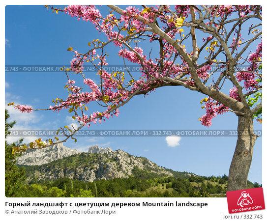 Горный ландшафт с цветущим деревом Mountain landscape, фото № 332743, снято 10 мая 2007 г. (c) Анатолий Заводсков / Фотобанк Лори