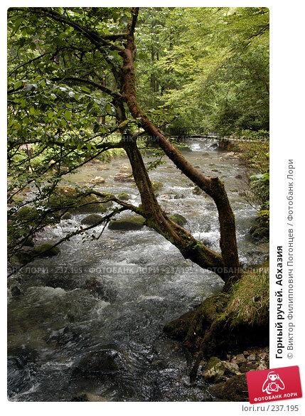 Купить «Горный ручей. Абхазия», фото № 237195, снято 1 августа 2005 г. (c) Виктор Филиппович Погонцев / Фотобанк Лори