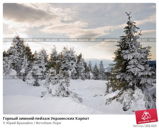 Горный зимний пейзаж Украинских Карпат, фото № 202023, снято 3 января 2008 г. (c) Юрий Брыкайло / Фотобанк Лори