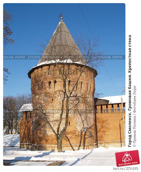 Город Смоленск. Громовая башня. Крепостная стена, фото № 273015, снято 26 января 2007 г. (c) Примак Полина / Фотобанк Лори
