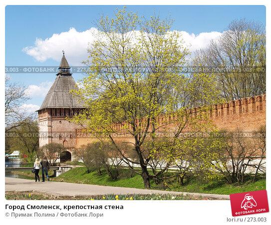 Купить «Город Смоленск, крепостная стена», фото № 273003, снято 26 апреля 2008 г. (c) Примак Полина / Фотобанк Лори