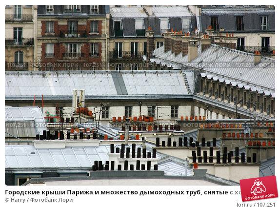 Купить «Городские крыши Парижа и множество дымоходных труб, снятые с холма Монмартр, Париж, Франция», фото № 107251, снято 27 февраля 2006 г. (c) Harry / Фотобанк Лори