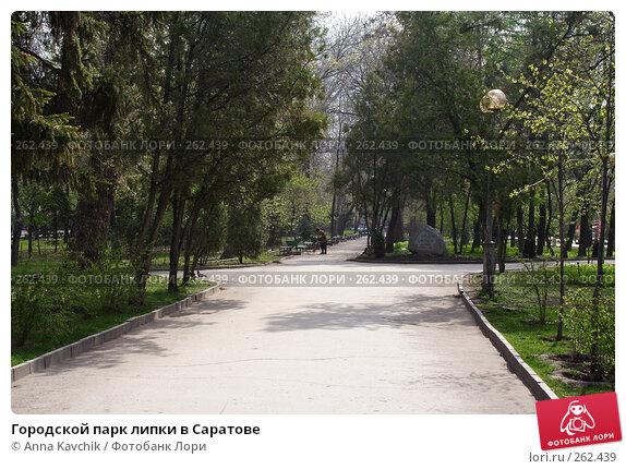 Городской парк липки в Саратове, фото № 262439, снято 23 апреля 2008 г. (c) Anna Kavchik / Фотобанк Лори