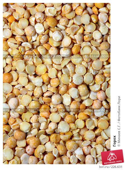 Купить «Горох», фото № 226631, снято 16 марта 2008 г. (c) Минаев С.Г. / Фотобанк Лори